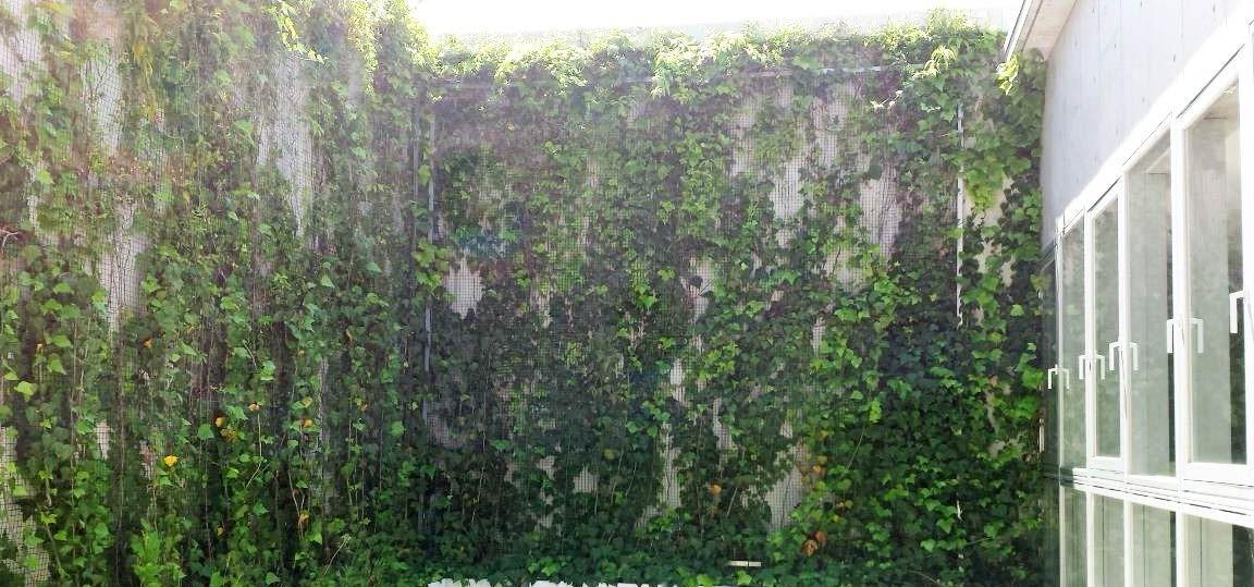 緑化 助成 金