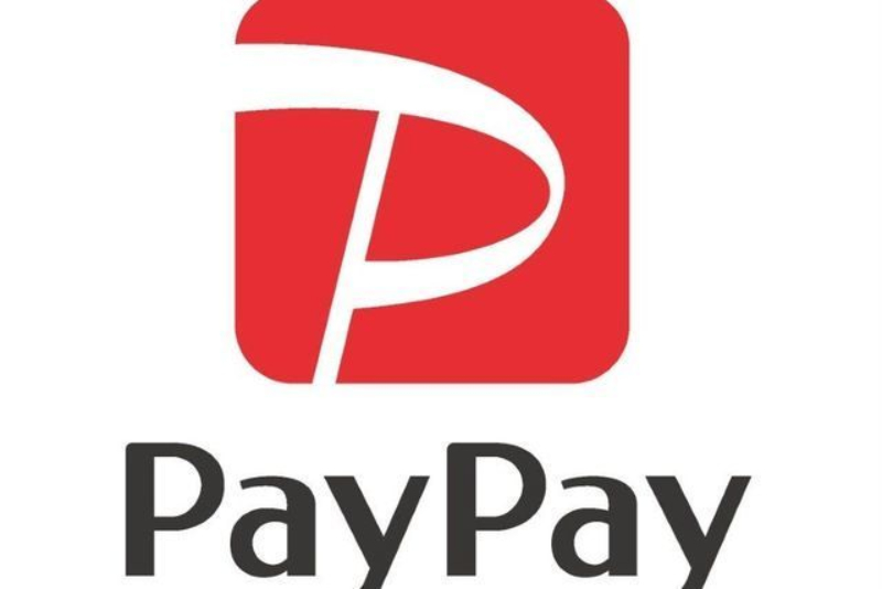 paypay 資金調達 個人向けローン ビジネスローン 借り入れ