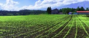 補助金 農の雇用事業