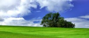 令和3年度土地改良区体制強化事業