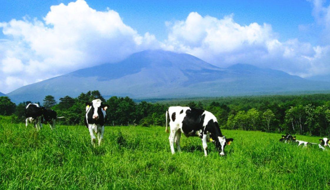 令和3年度農林水産分野における持続可能なプラスチック利用対策事業のうち農畜産業プラスチック対策強化事業