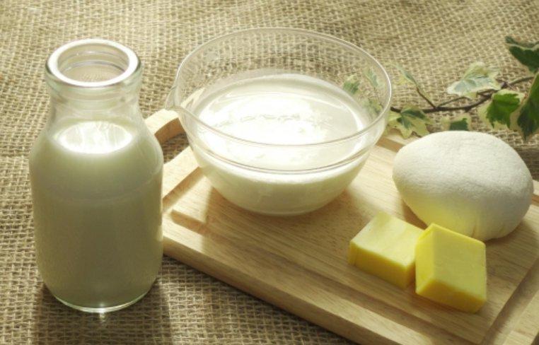 国産乳製品等競争力強化対策事業