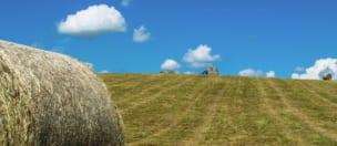 令和2年度草地難防除雑草駆除技術実証事業