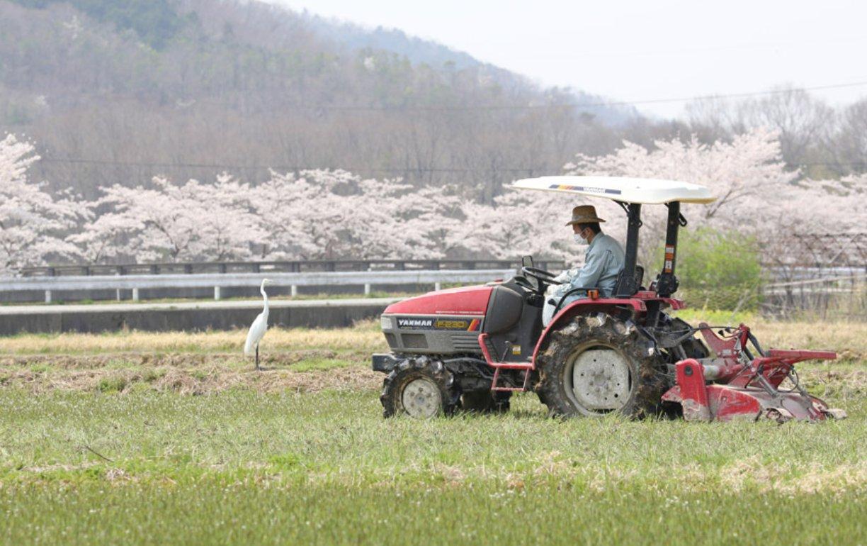令和3年度強い農業・担い手づくり総合支援交付金(生産事業モデル支援タイプ)