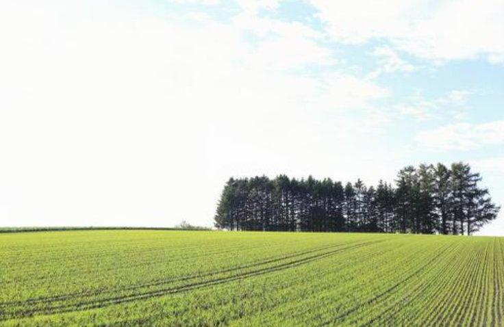 令和3年度農家負担金軽減支援対策事業