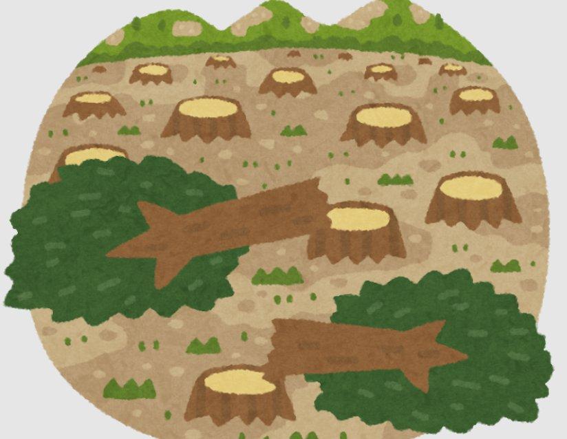 森林情報活用促進事業のうち無断伐採の把握体制の整備