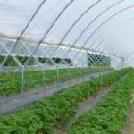 令和3年度スマート農業総合推進対策事業のうち農林水産データ管理・活用基盤強化事業